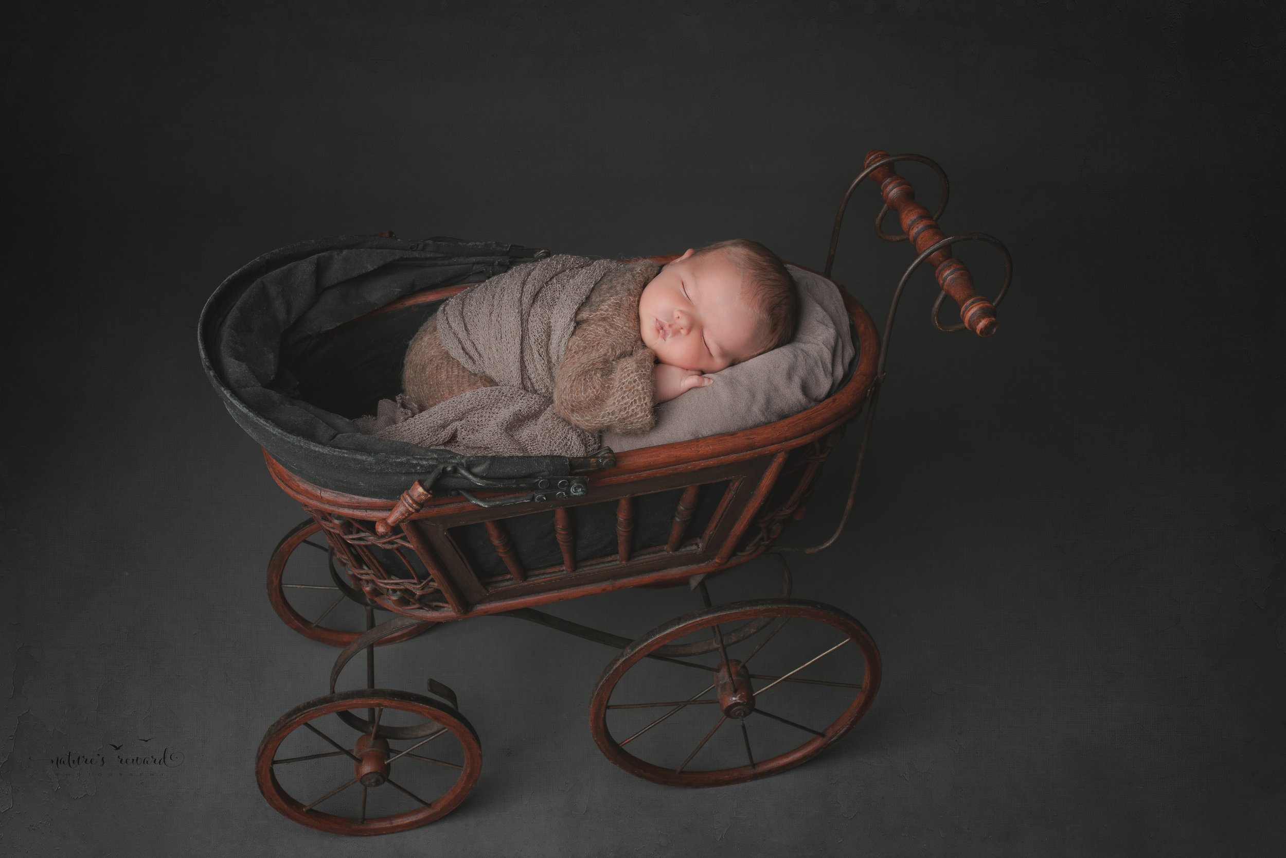 Newborn Baby boy in a stroller, a portrait by Nature's Reward Photography