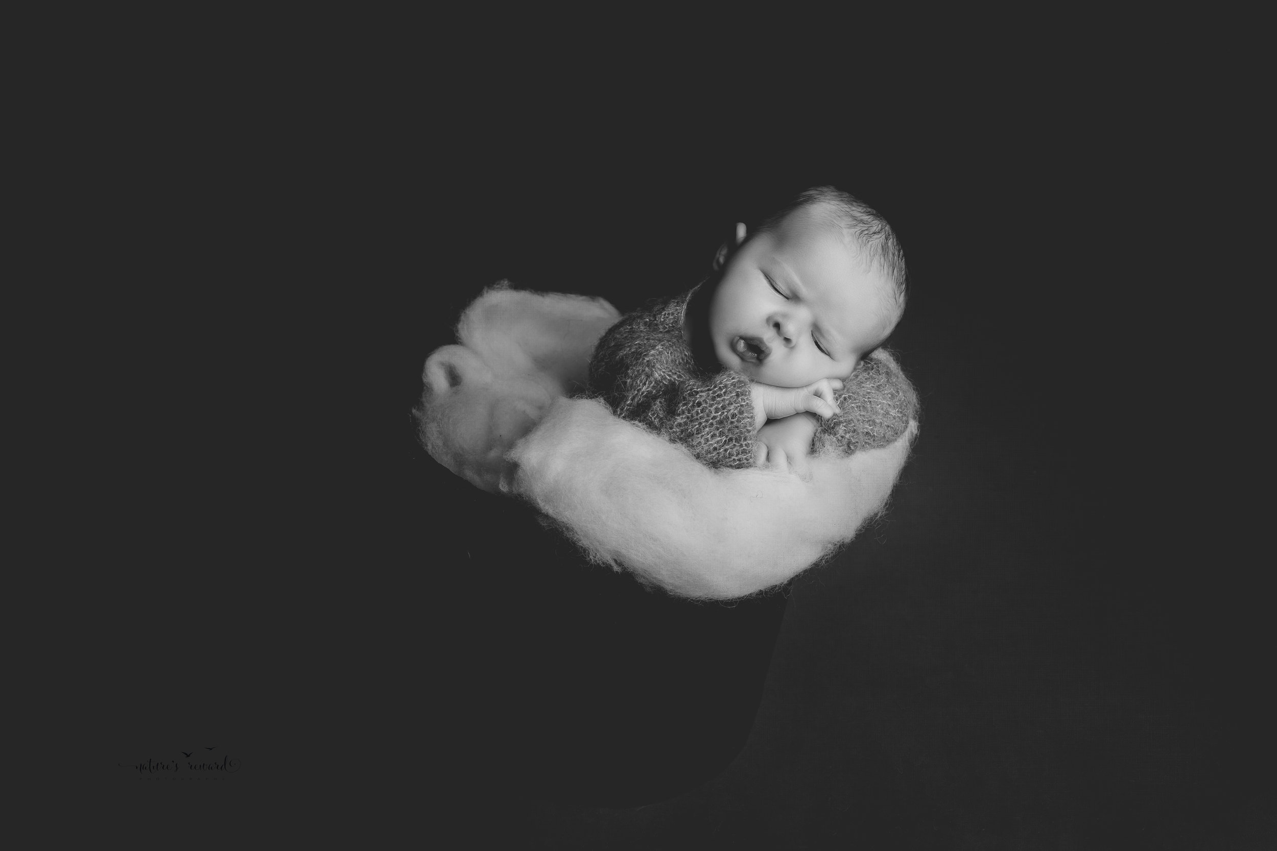 Newborn Baby boy in a bucket, a black and white portrait by Nature's Reward Photography