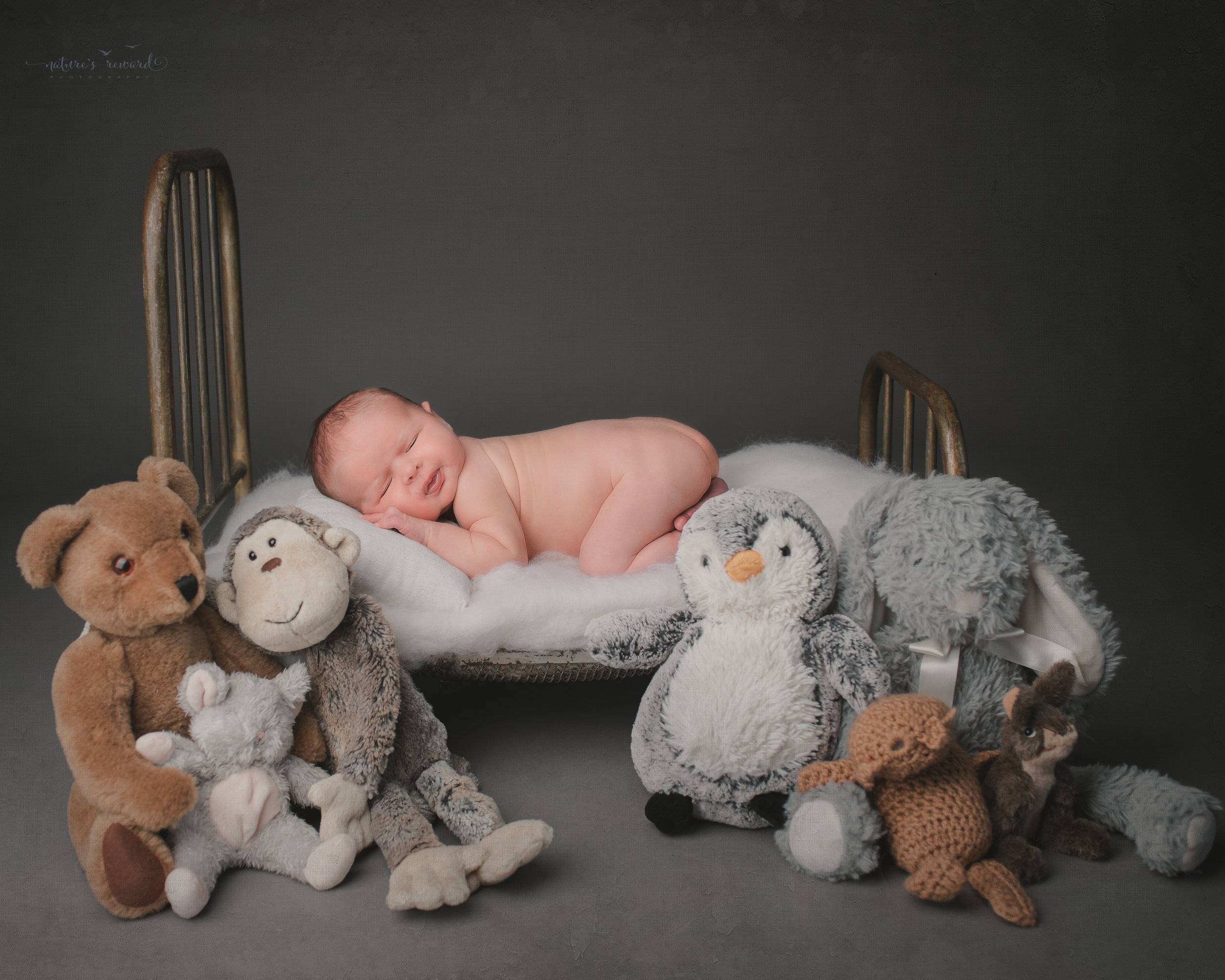 Newborn Baby boy on a doll bed surrounded by teddy's, a portrait by Nature's Reward Photography