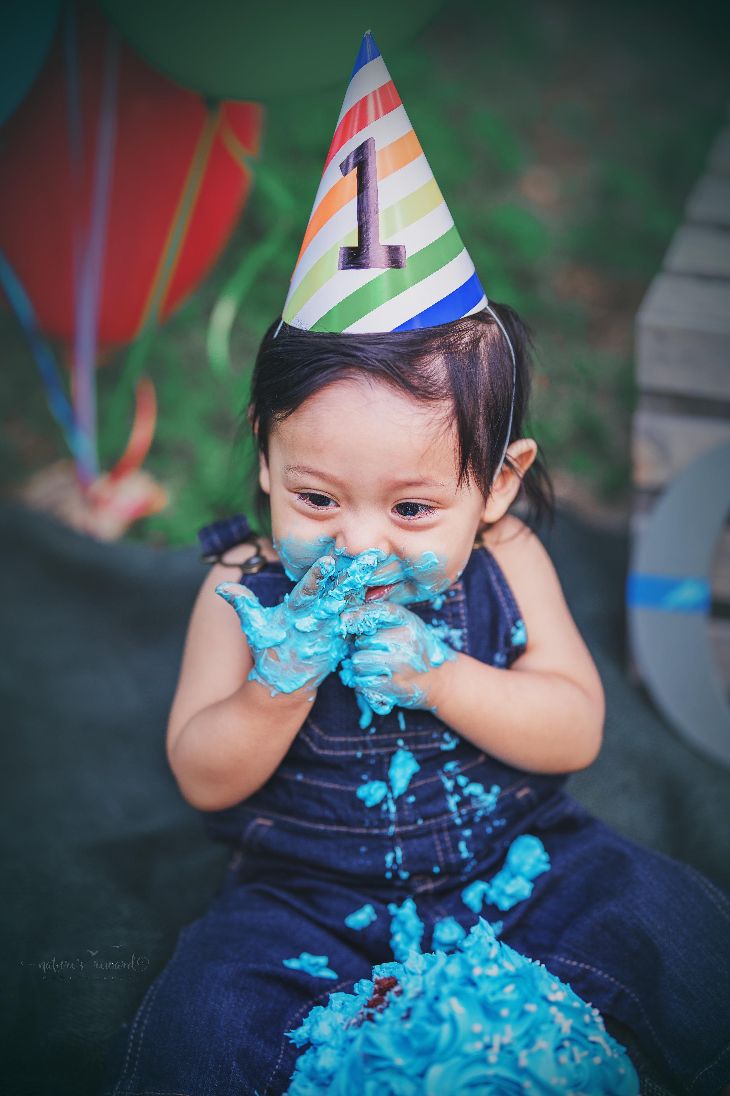 Cake smash portrait by Nature's Reward Photography