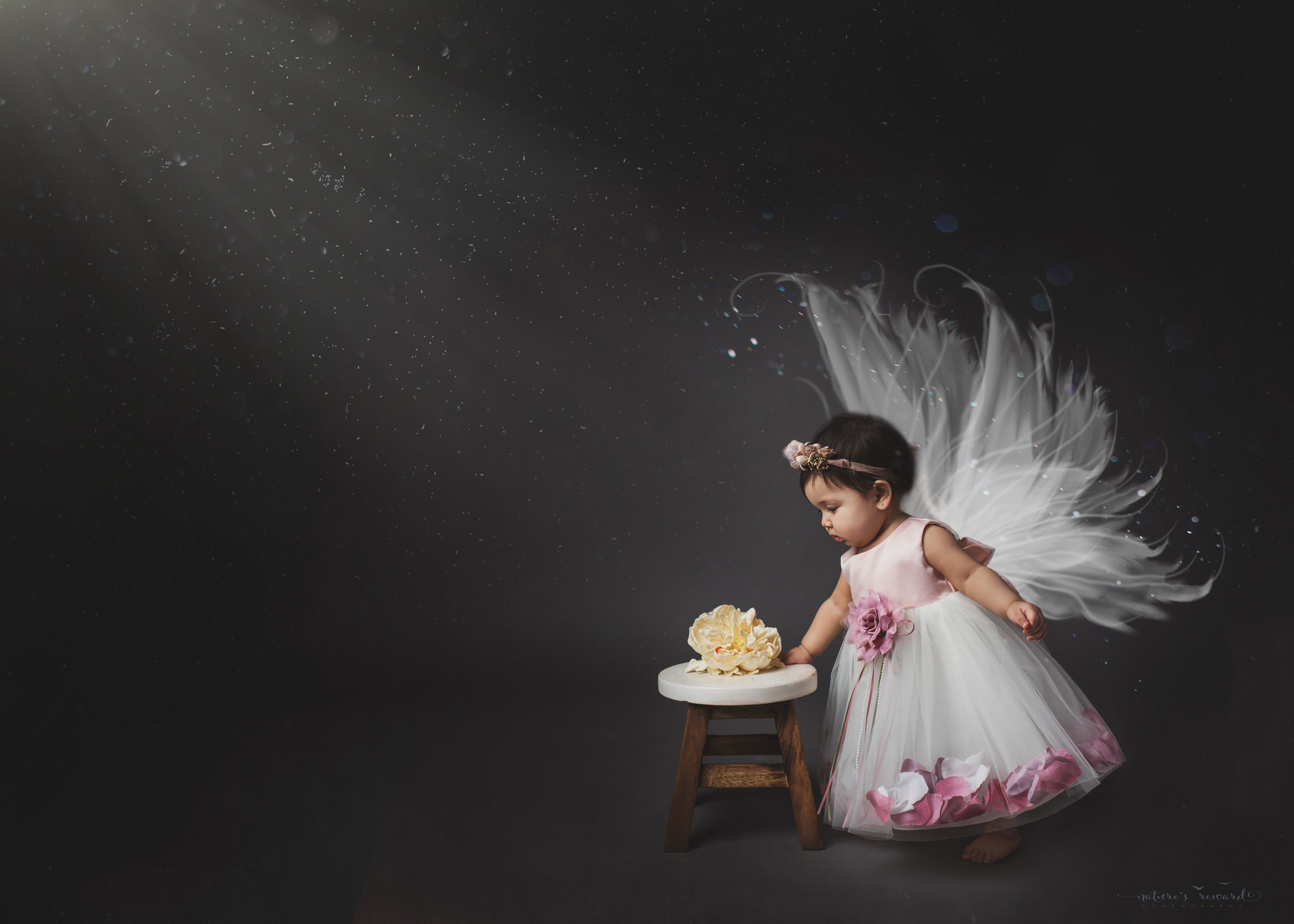First year portrait, and a fairy at that, a portrait by Nature's Reward Photography