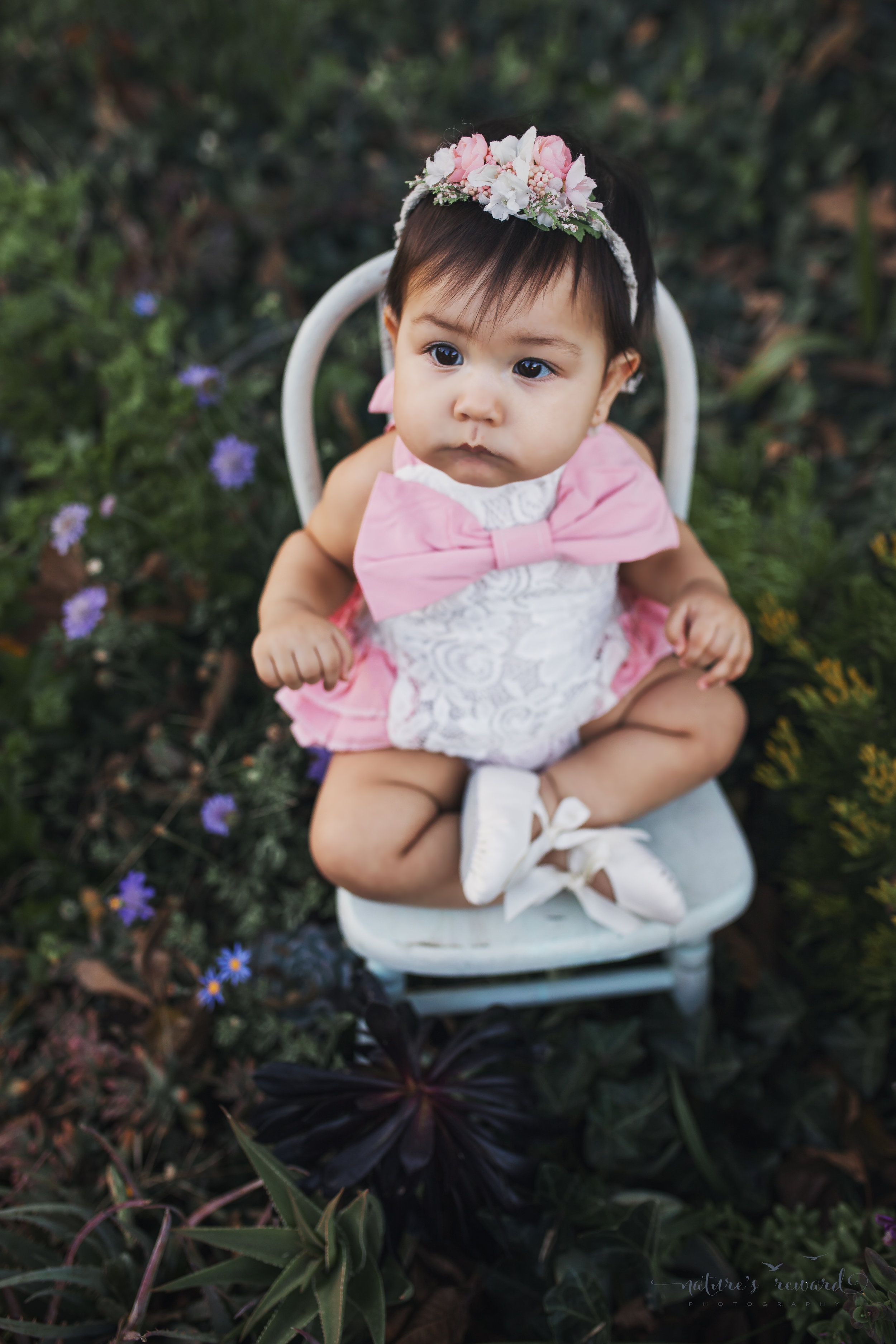 Baby girl in a succulent garden, a Portrait By Nature's Reward Photography