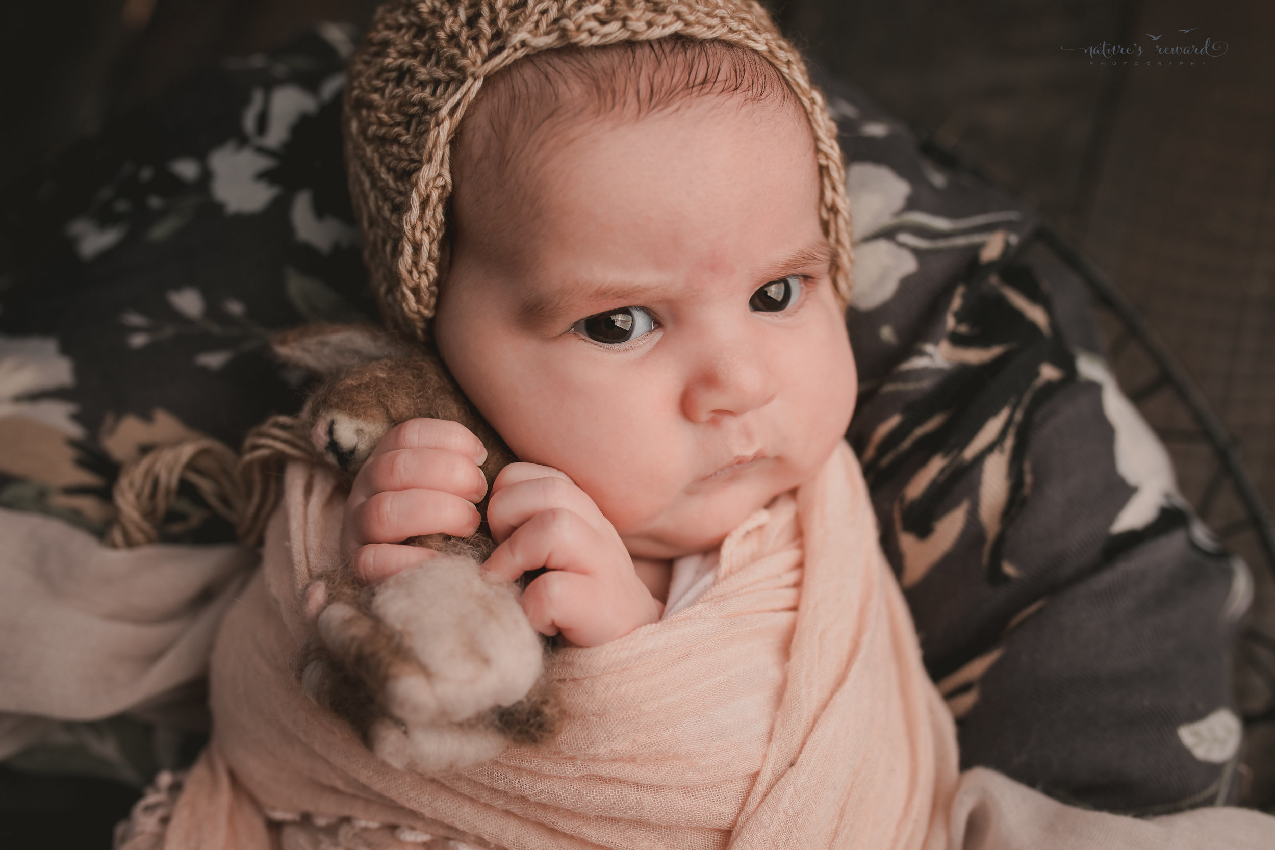 Holding a bunny and not willing to share- swaddled in lace and laying on grey floral on a wood floor, a newborn portrait by Nature's Reward Photography