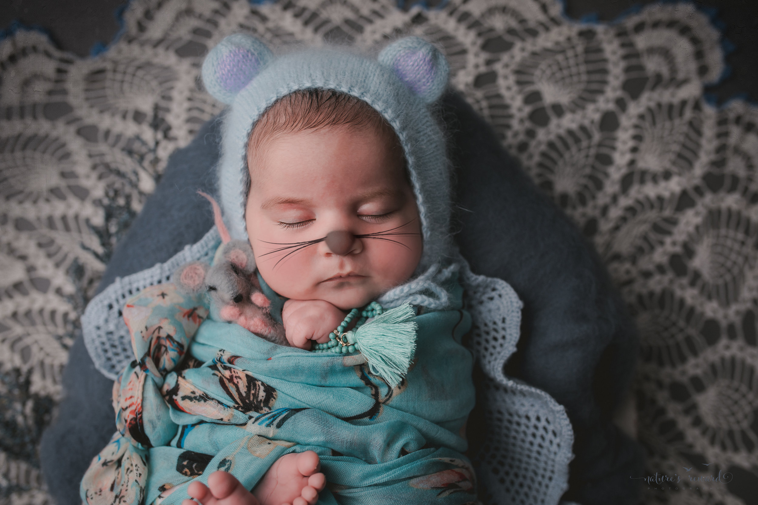 In blue floral and coral on vintage lace holding a mouse with her own whiskers - a newborn portrait by nature's reward photography