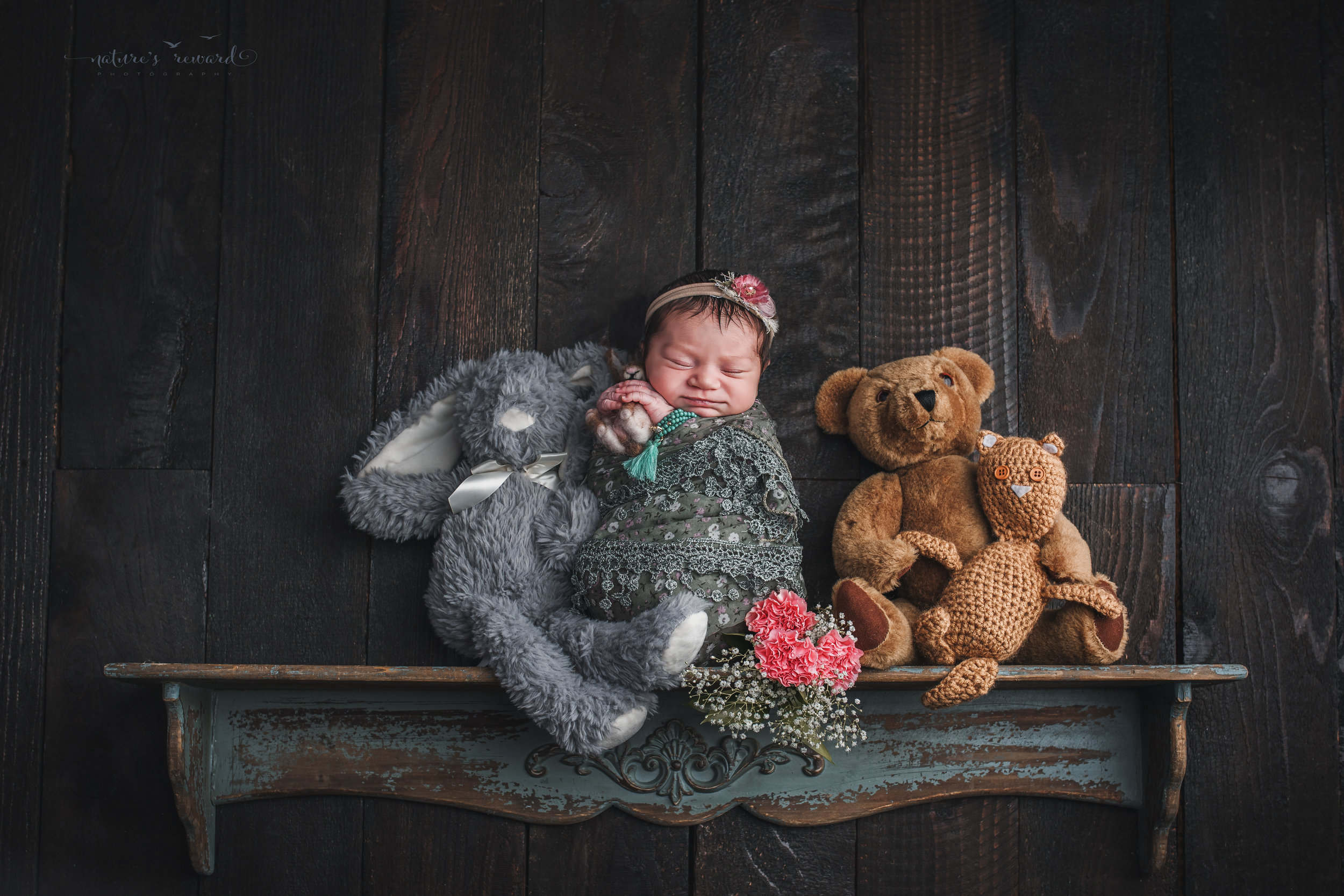 A newborn baby girl on a shelf telling her birth story, a portrait by Nature's Reward Photography.