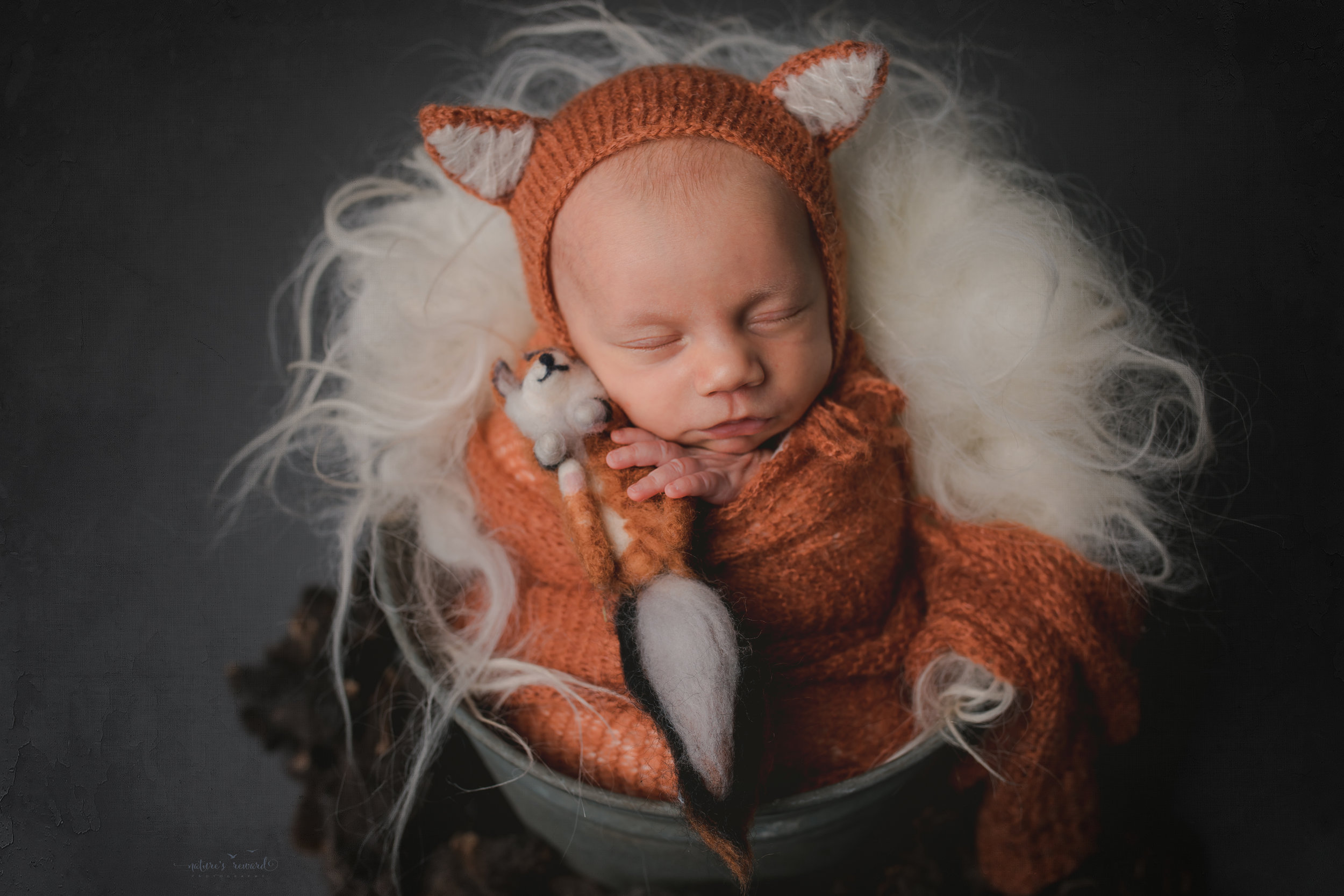 A baby boy in a bucket wearing a fox hat and holding a fox- a portrait by Nature's Reward Photography