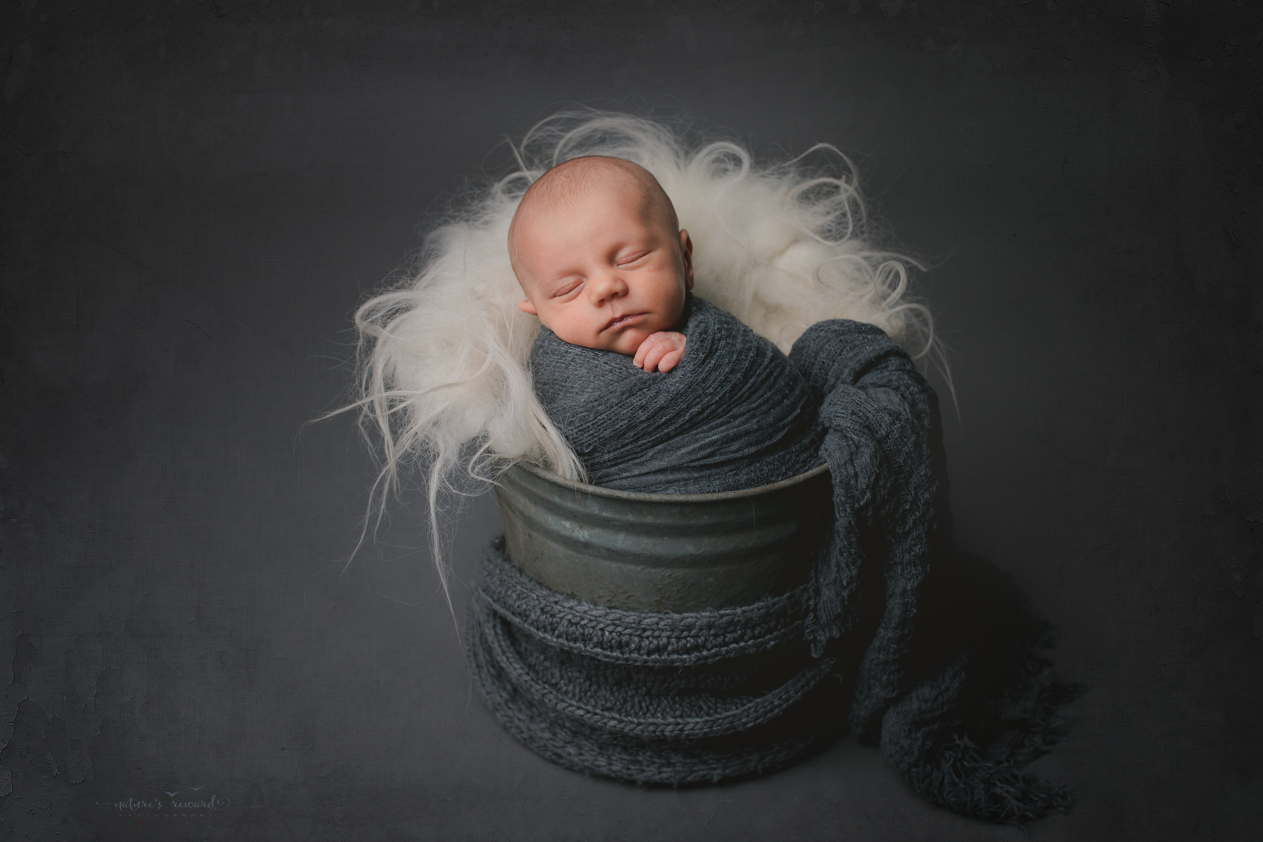 A baby boy in a bucket - a portrait by Nature's Reward Photography
