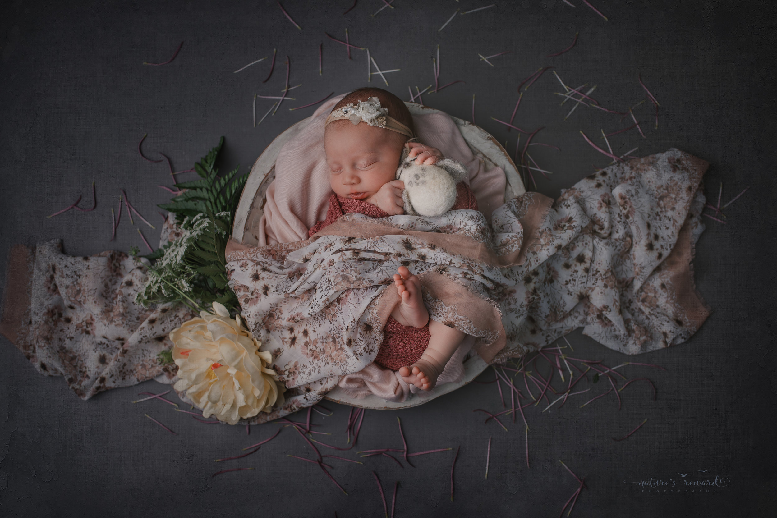 Newborn baby Girl swaddled in pink with her toes showing on  greyl backdrop surrounded by colorful flowers in this baby portrait by Nature's Reward Photography