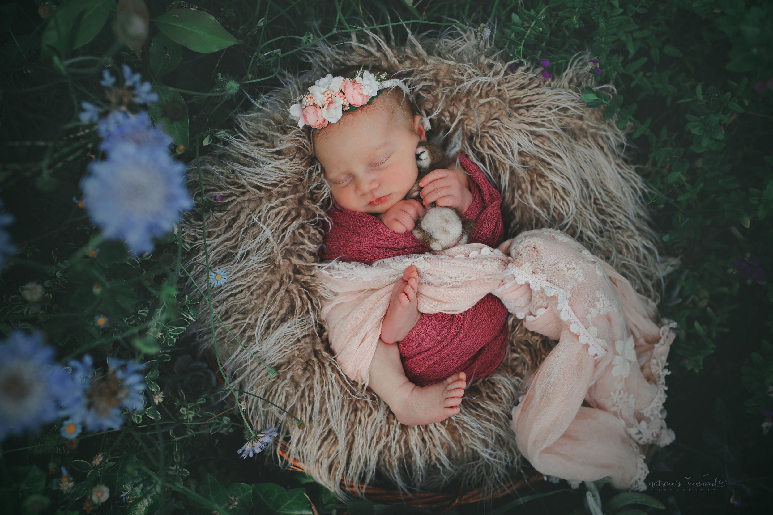 Newborn baby girl in a succulent and flower garden on a bed of fur wearing shade of pink, a baby portrait by Nature's Reward Photography