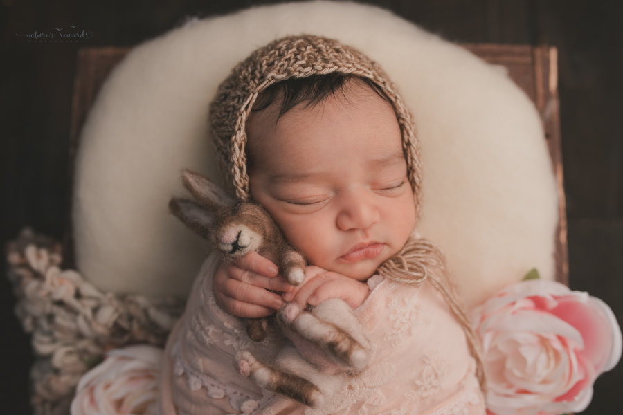 Newborn Baby girl wrapped in pink lace wearing a brown bonnet holding a bunny and sitting in a wooden box on a real wood floor in a stunning portrait by Nature's Reward Photography