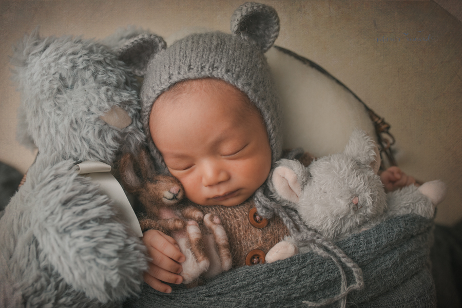 Newborn baby boy in a basket of fluff wearing a darling brown sleeper wearing a grey bear bonnet surrounded by friends while holding a hand felted bunny in a newborn portrait by Nature's Reward Photography