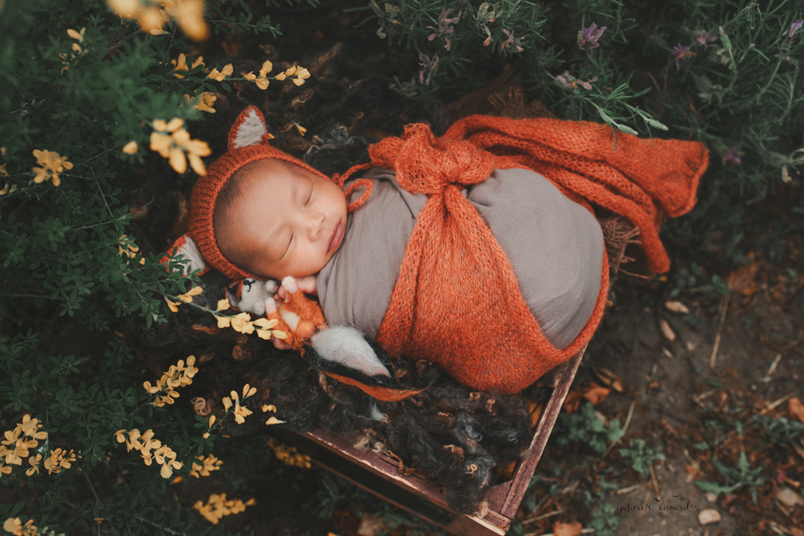 Newborn Baby boy swaddled and in the Garden wearing the cutest fox Bonnet holding a hand felted fox in a portrait by Nature's Reward Photography