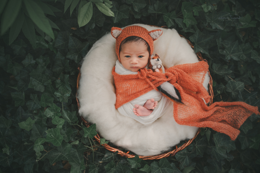 Newborn Baby boy in the garden dressed as fox with his gorgeous dark eyes wide open in this portrait by Nature's Reward Photography