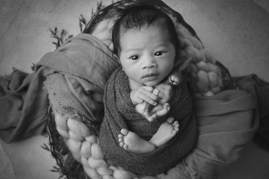 Black and white portrait of Newborn Baby boy in this beautiful portrait swaddled in blue holding a bunny with his eyes wide open by Nature's Reward Photography