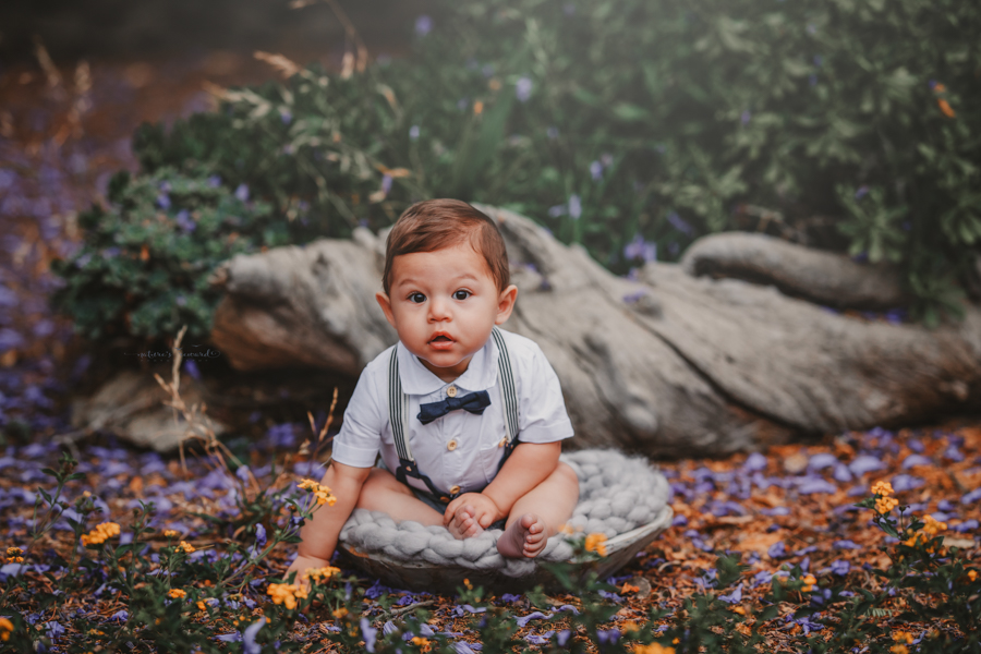 6 month old baby boy in his sitter session in a beautiful park, a portrait by Nature's Reward Photography