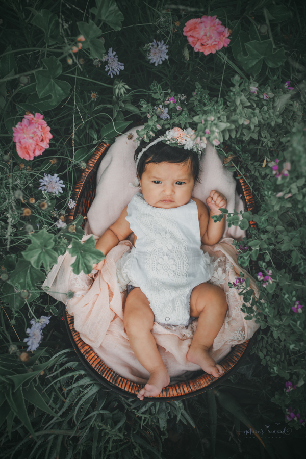 Newborn baby girl in a succulent garden in a  newborn portrait by Nature's Reward Photography