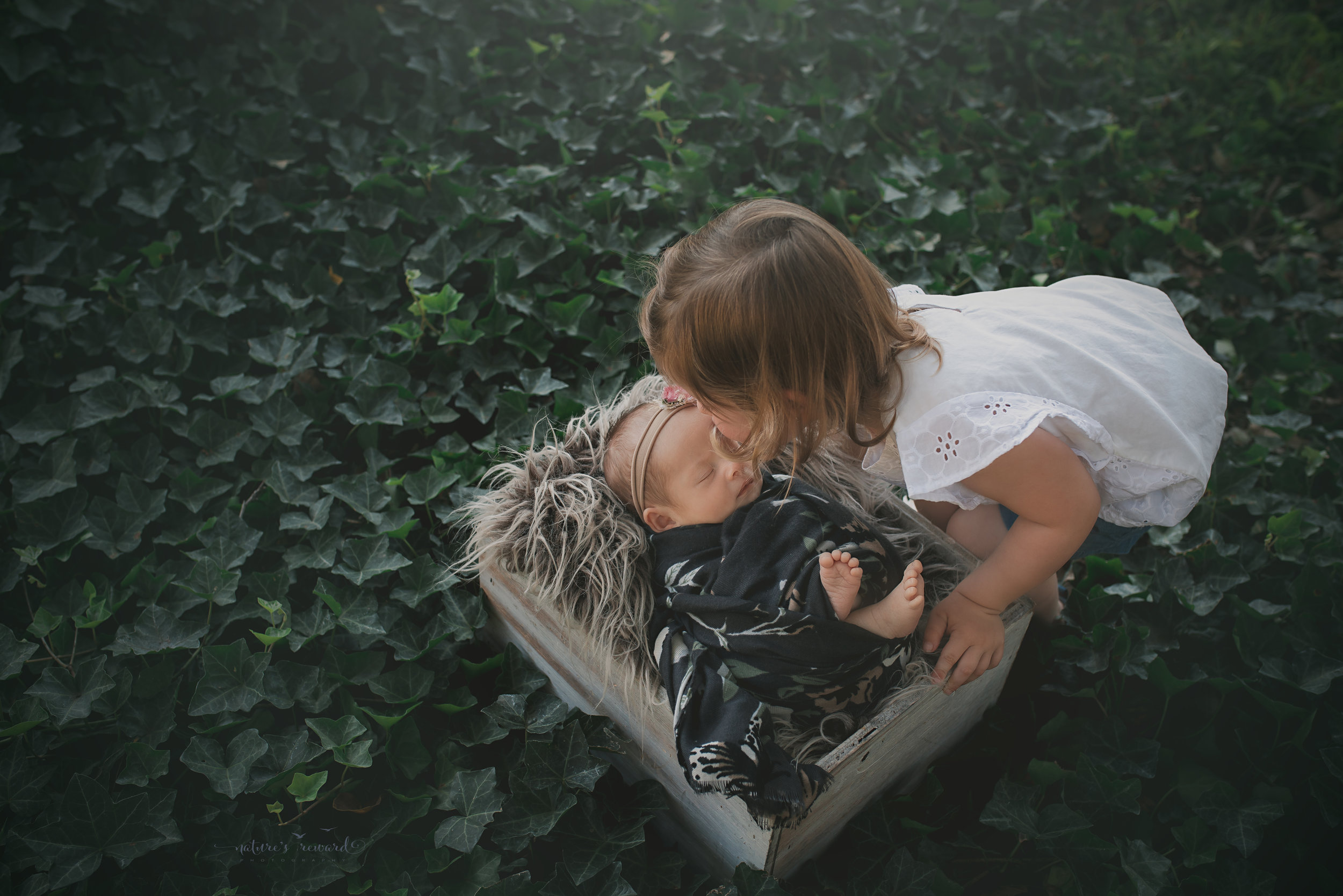 A kiss for little sister in the ivy garden, a newborn portrait by Nature's Reward Photography