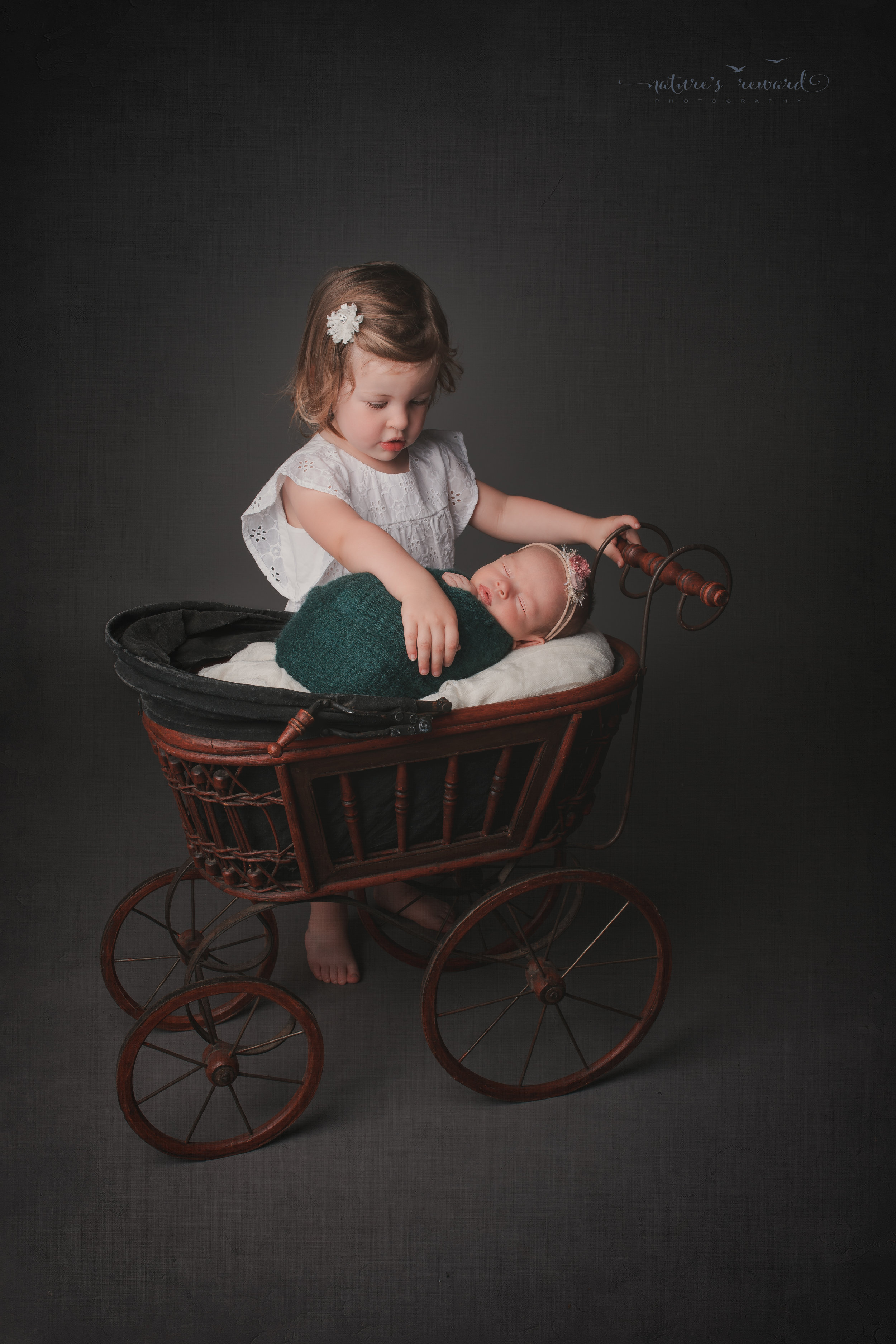 Big sister and her newborn sister in a carriage, a newborn portrait by Nature's Reward Photography