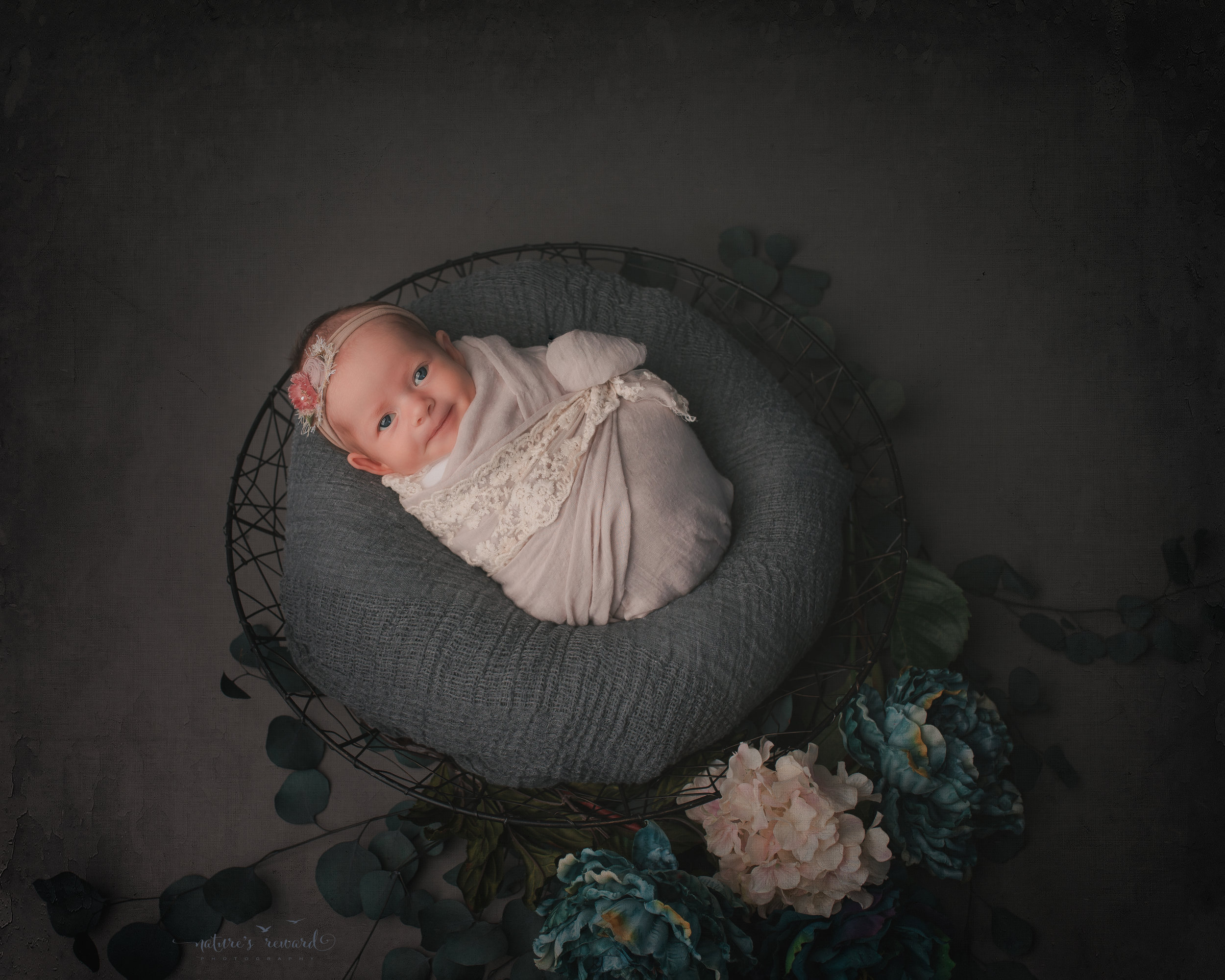 Gorgeous newborn baby girl wrapped in tan lace on grey with teal flowers, , a newborn portrait by Nature's Reward Photography