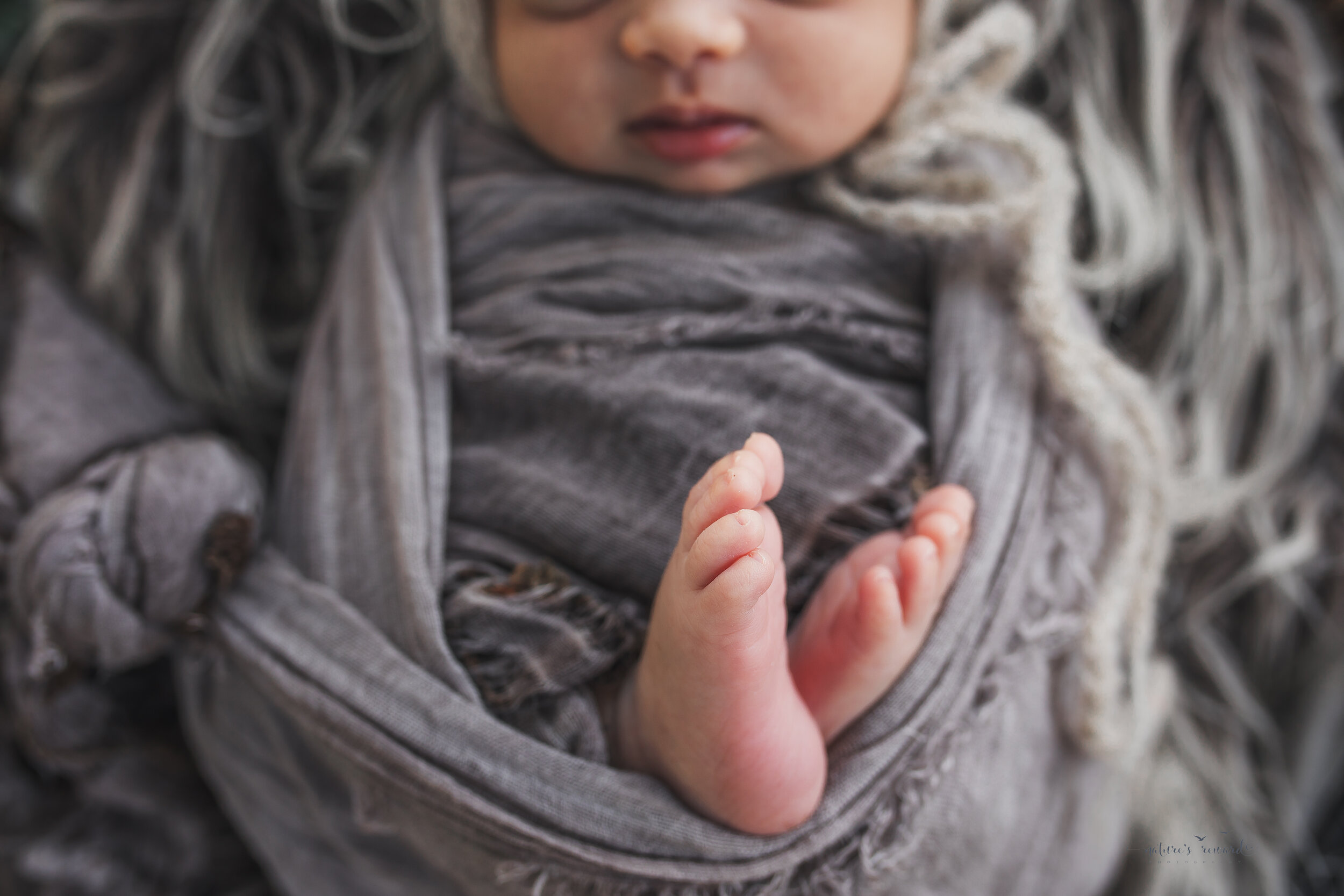 Sweet baby toes, a newborn portrait by Nature's Reward Photography