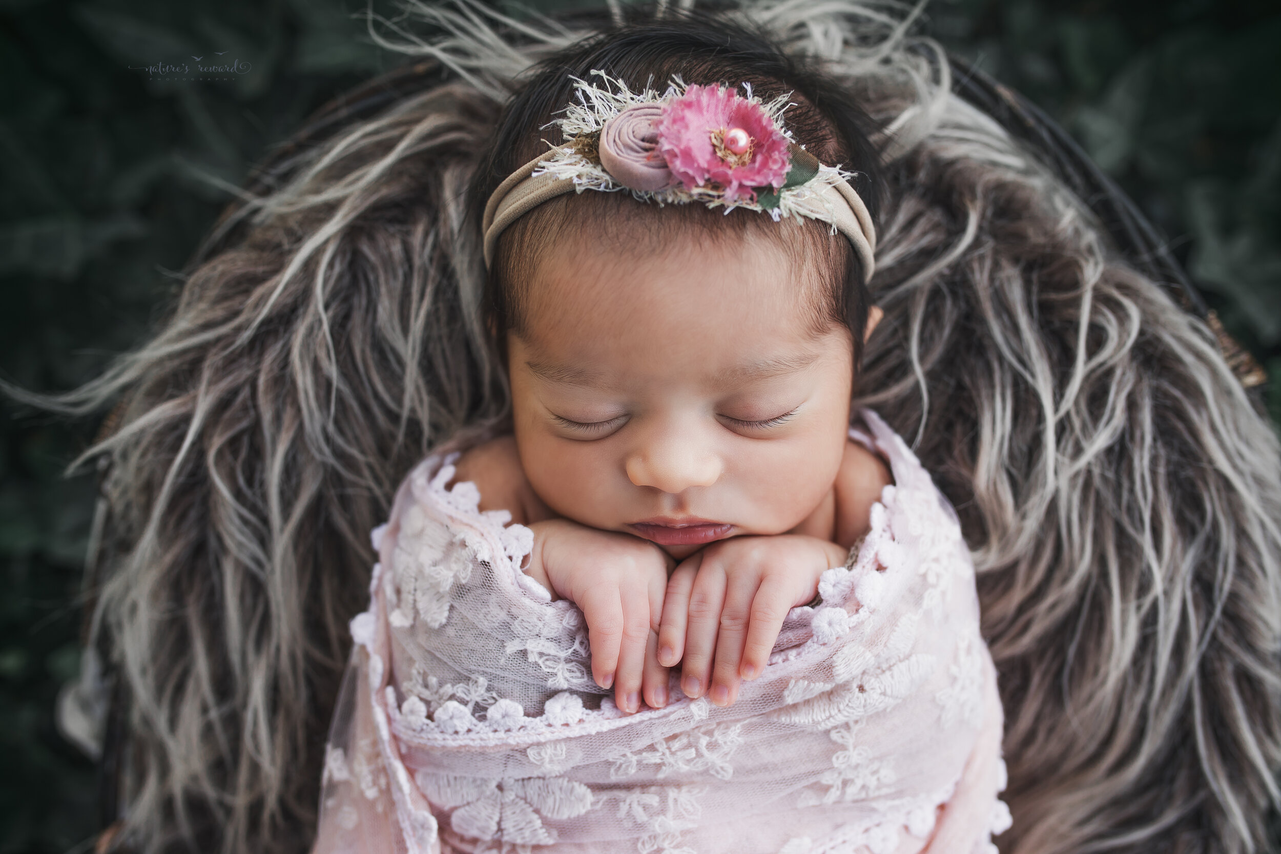 Newborn baby girl wrapped in pink lace, a newborn portrait by Nature's Reward Photography
