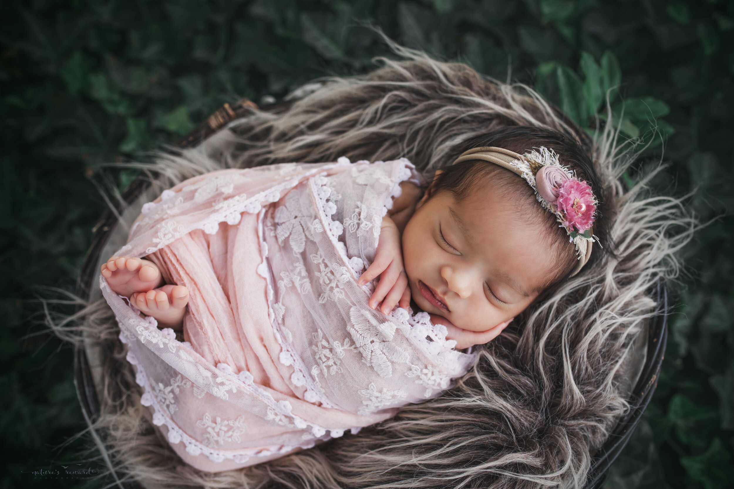 Sweet baby girl swaddled in pink lace in a garden of ivy, a newborn portrait by Nature's Reward Photography