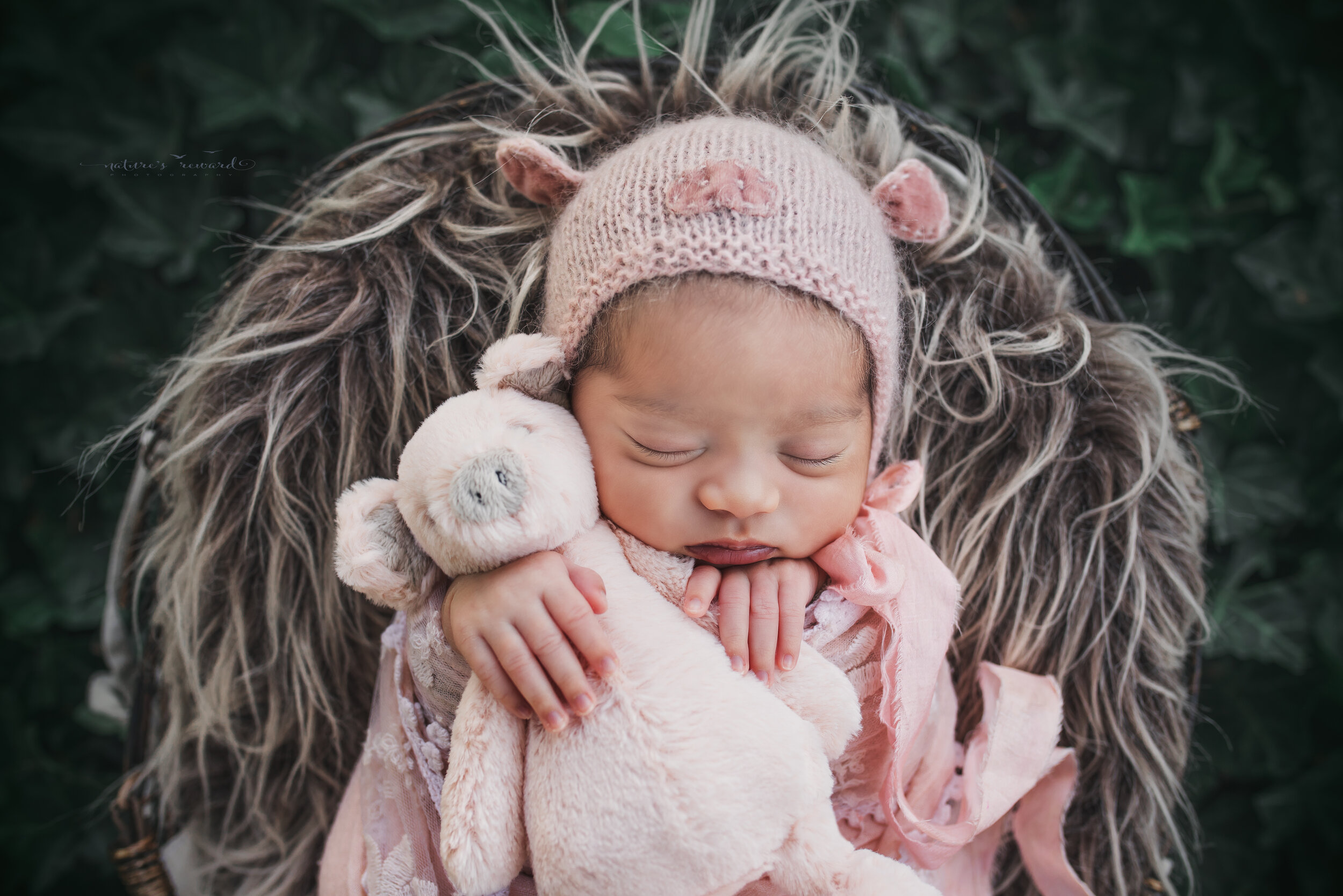 Sweet baby girl swaddled in pink lace wearing a pig bonnet (the year of the pig) in a garden of ivy, a newborn portrait by Nature's Reward Photography