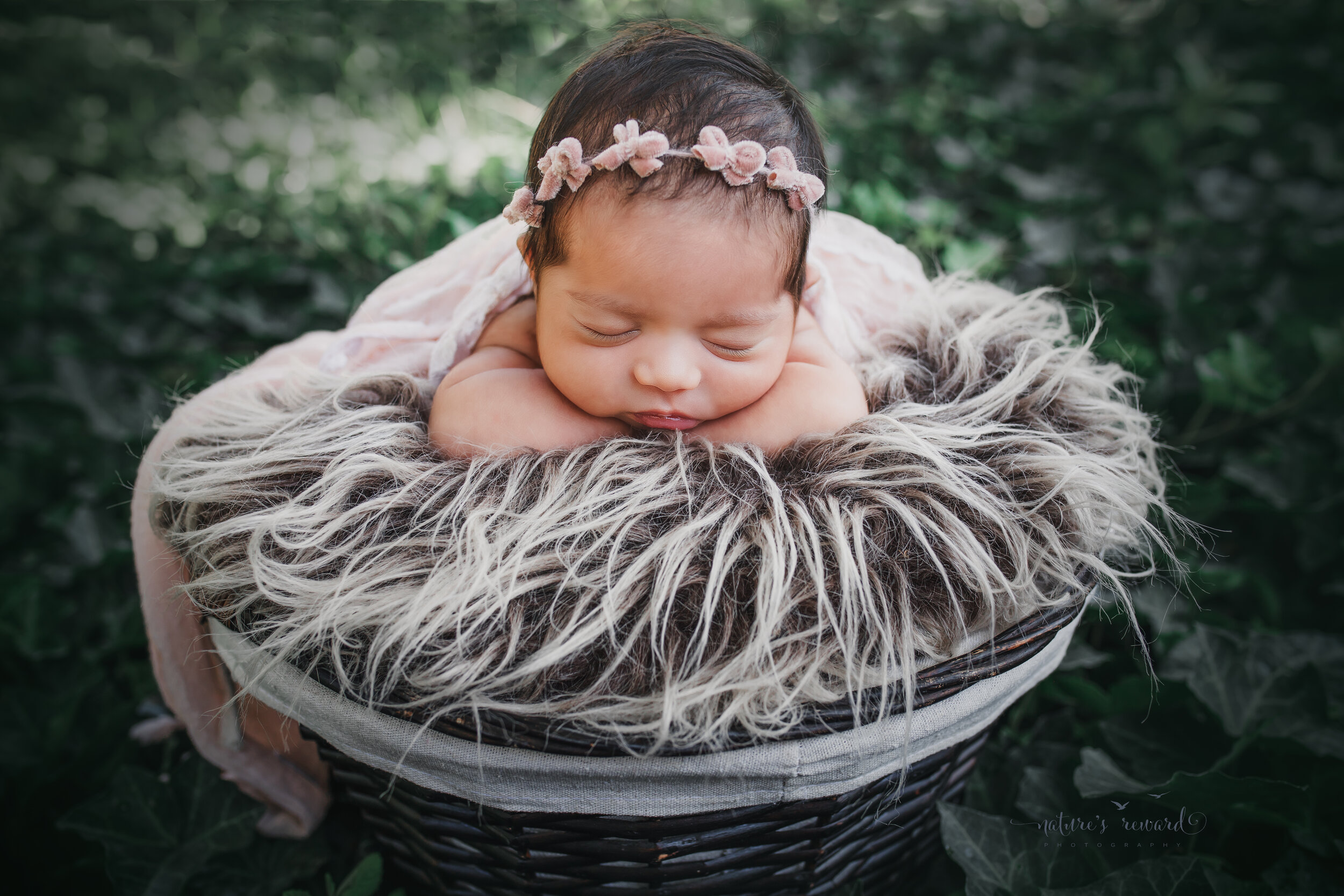 Sweet baby girl in a garden of ivy, a newborn portrait by Nature's Reward Photography