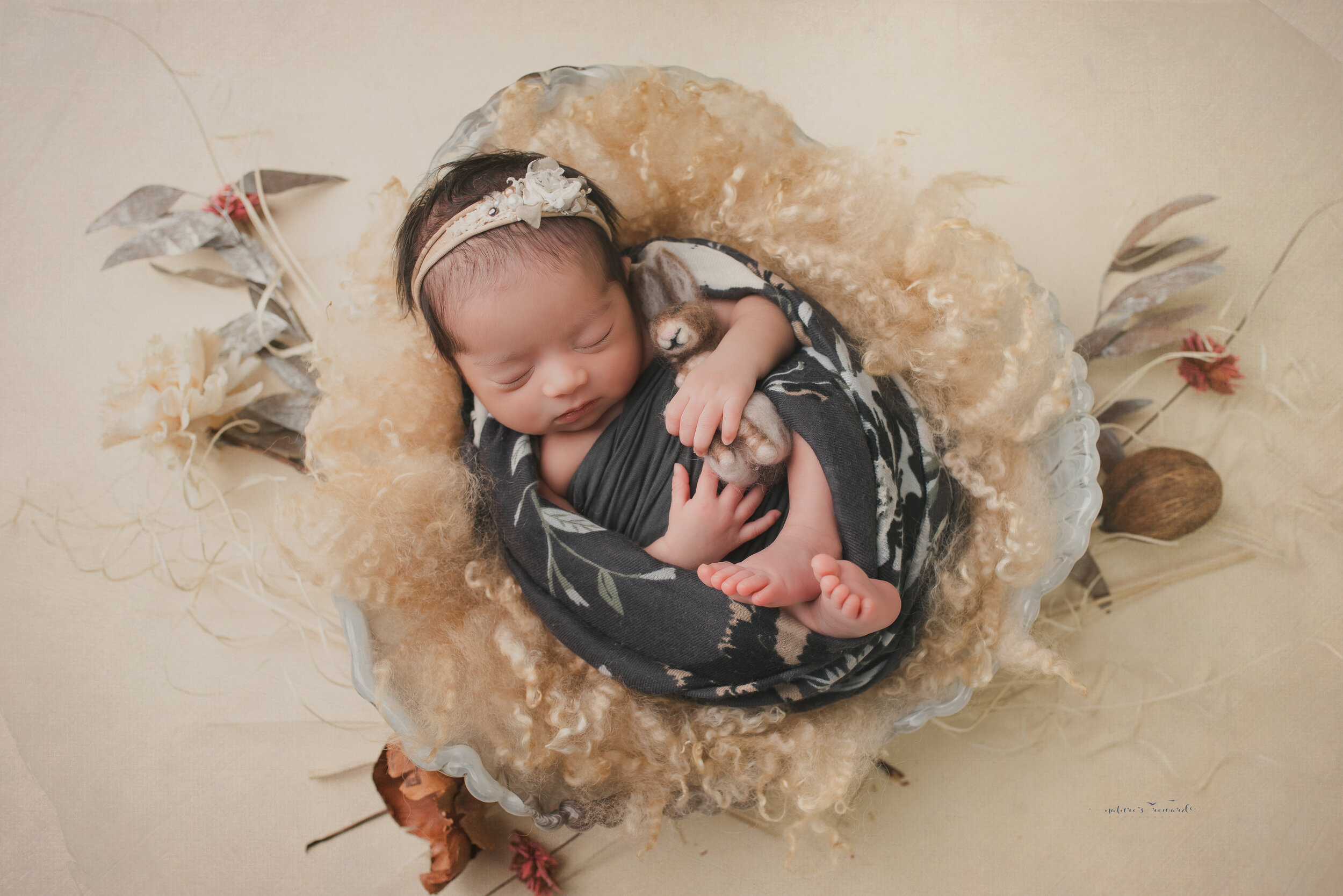 Swaddled in grey in an ivory bowl on tan backdrop, a newborn portrait by Nature's Reward Photography