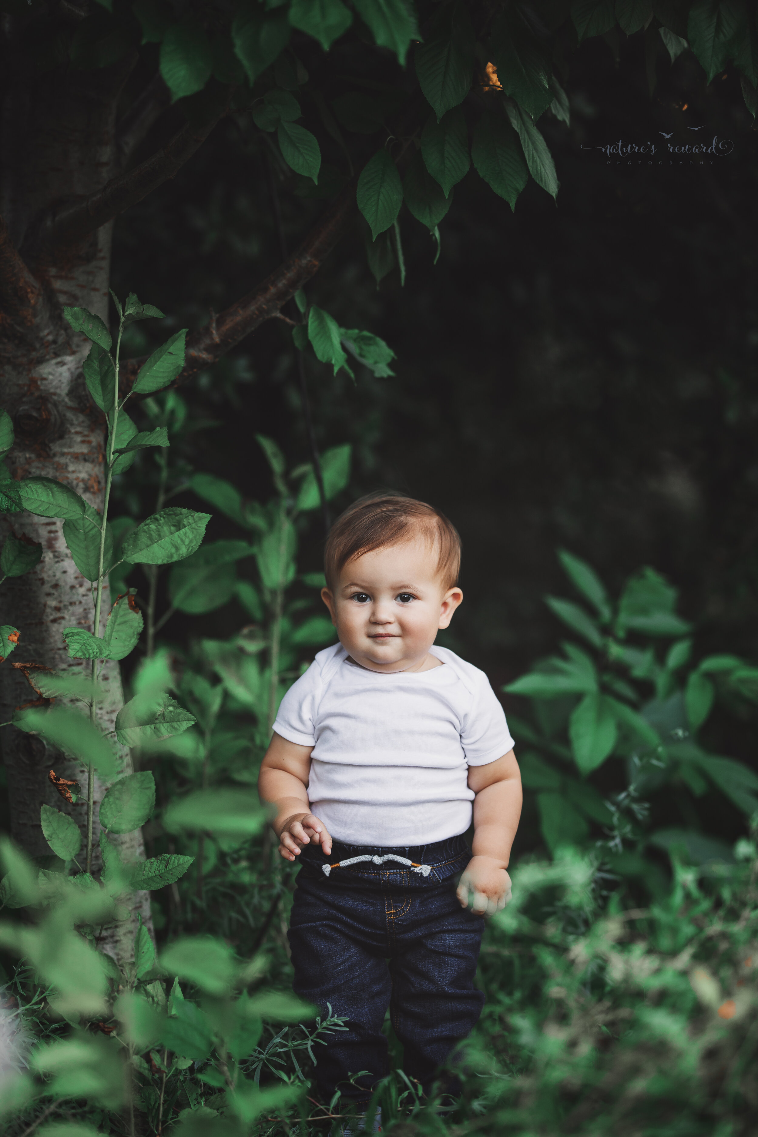 One year old Baby Boy session at the park by Nature's Reward Photography