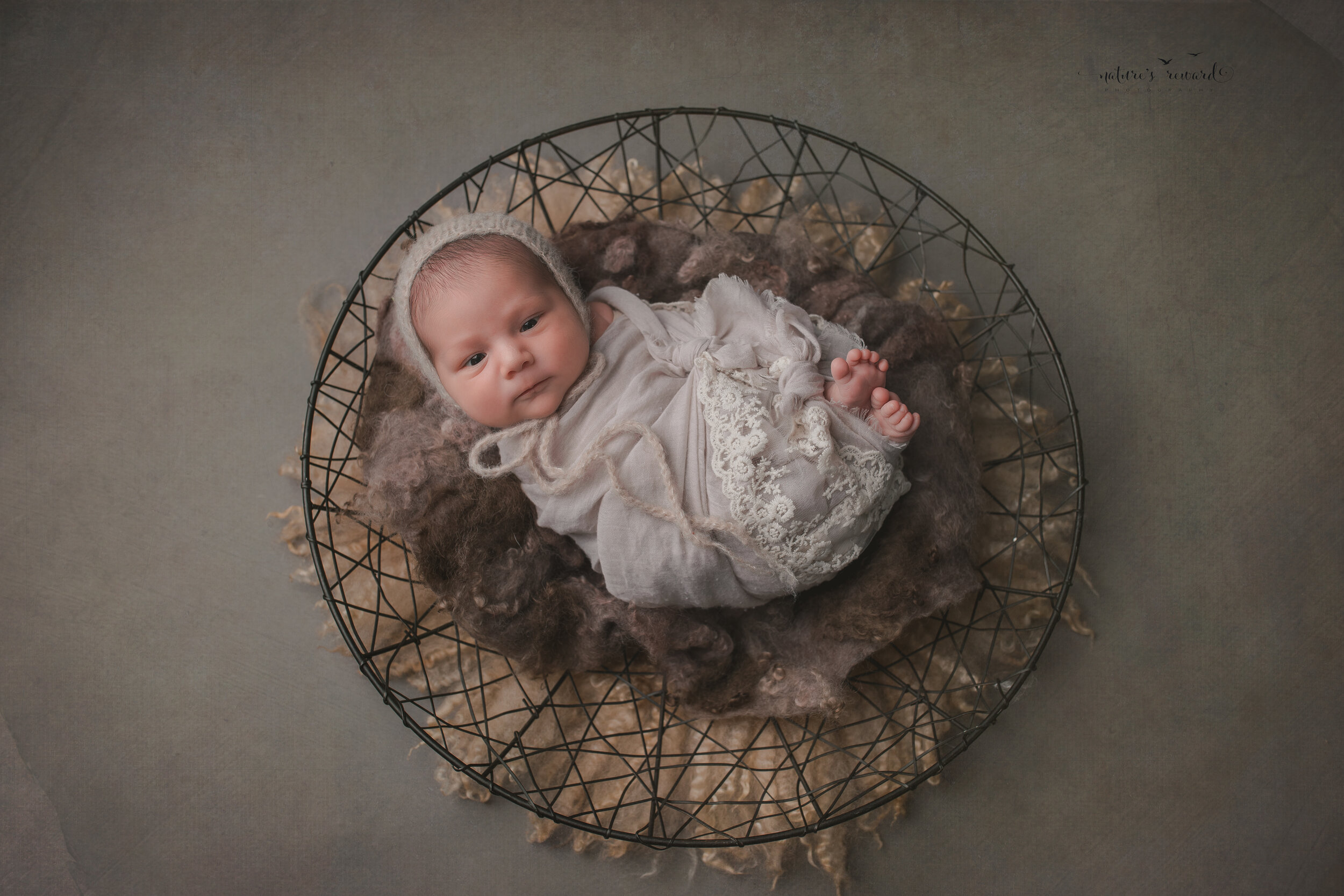Beautiful newborn baby girl swaddled and in a bowl with her toes showing in this portrait by Nature's Reward Photography