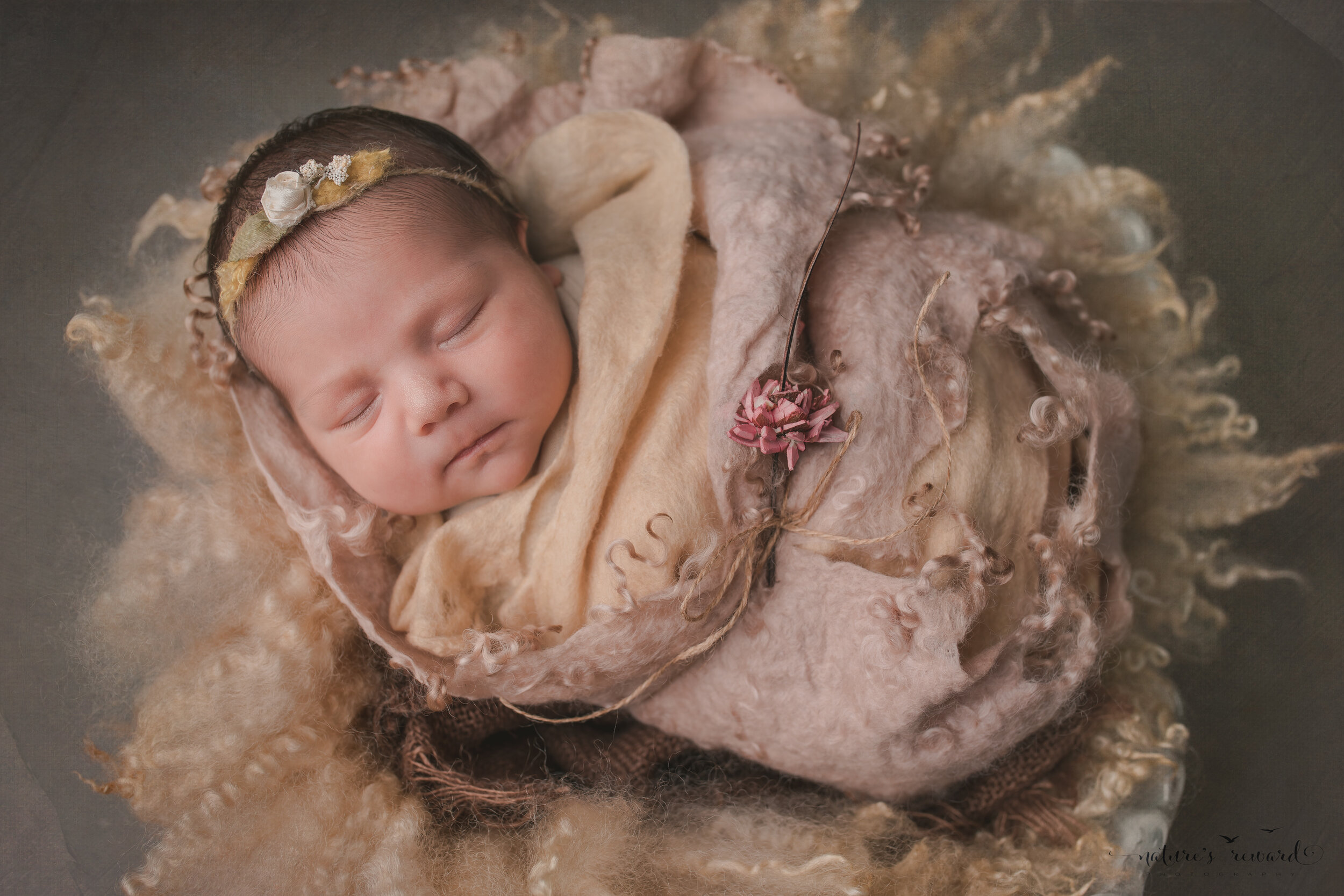 Beautiful newborn baby girl swaddled in lovely layers in this portrait by Nature's Reward Photography