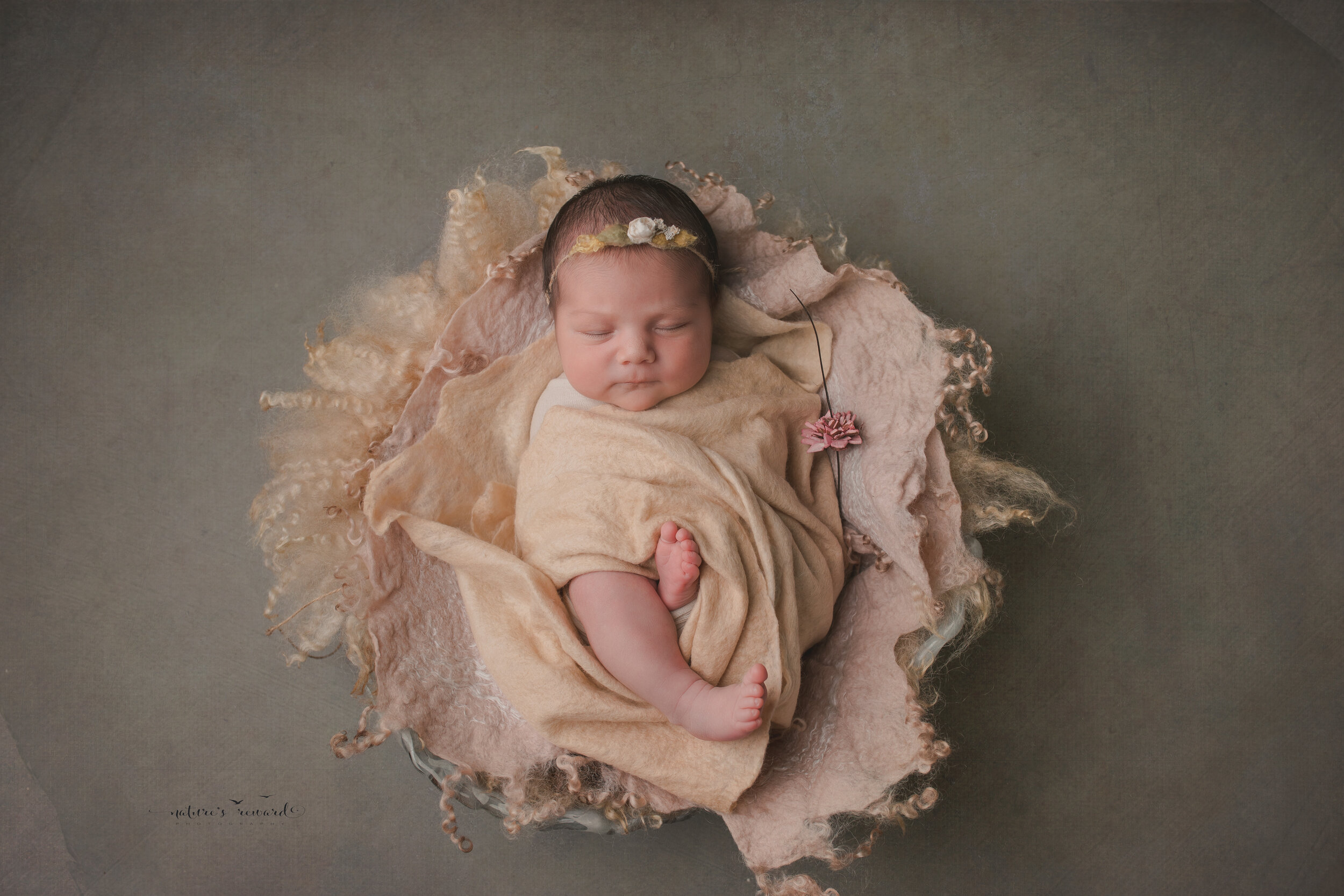 Beautiful newborn baby girl swaddled in lovely layers showing her leg and toes  in this portrait by Nature's Reward Photography