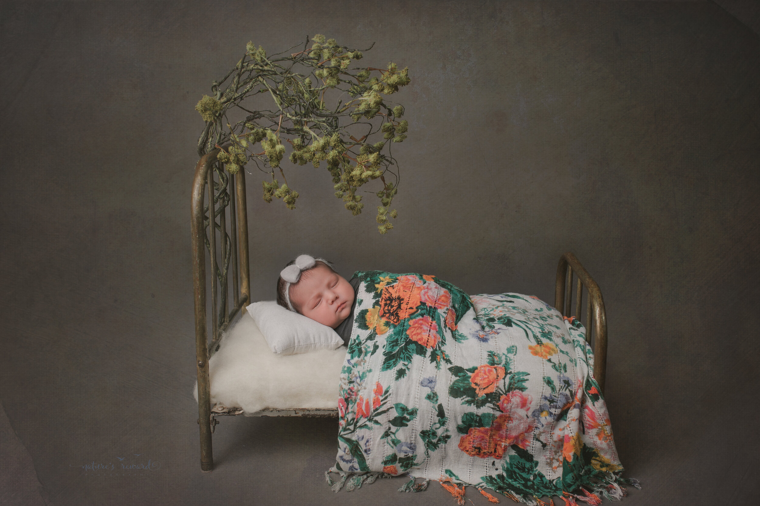 A newborn baby girl in a doll bed, in this portrait by Nature's Reward Photography