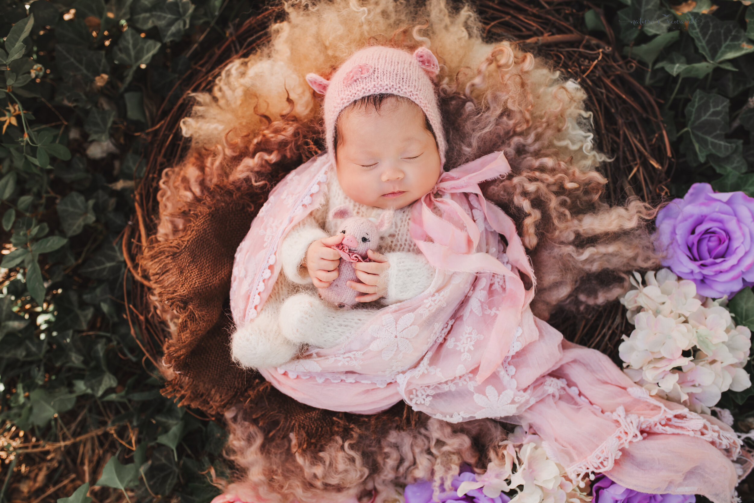 Newborn Baby girl in a pink swaddle wearing a piggy bonnet holding a pig (it's the year of the pig)  in a nest in a garden portrait by nature's Reward Photography