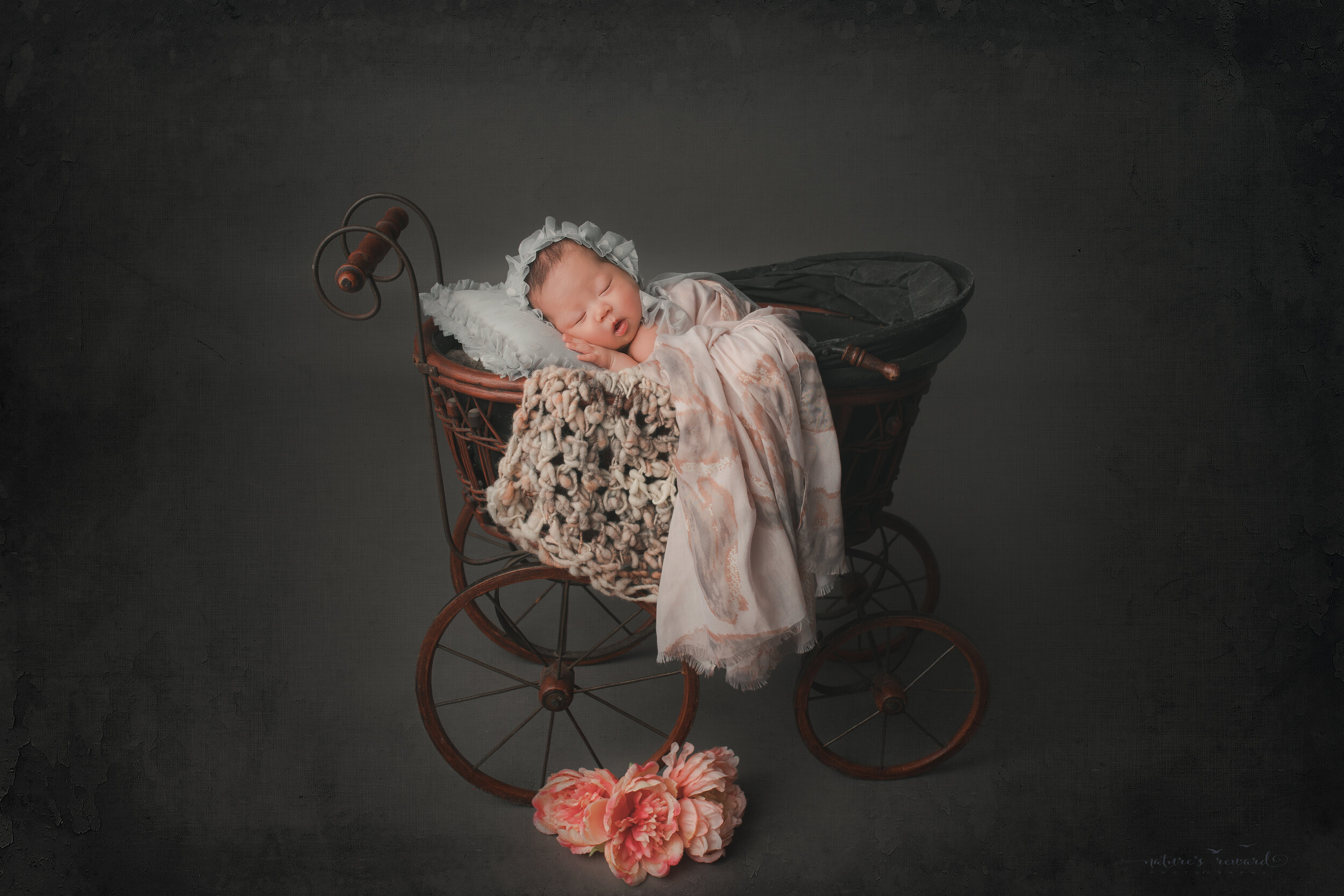 Newborn Baby girl in a BLue bonnet on a blue pillow in a tram in a studio portrait by nature's Reward Photography