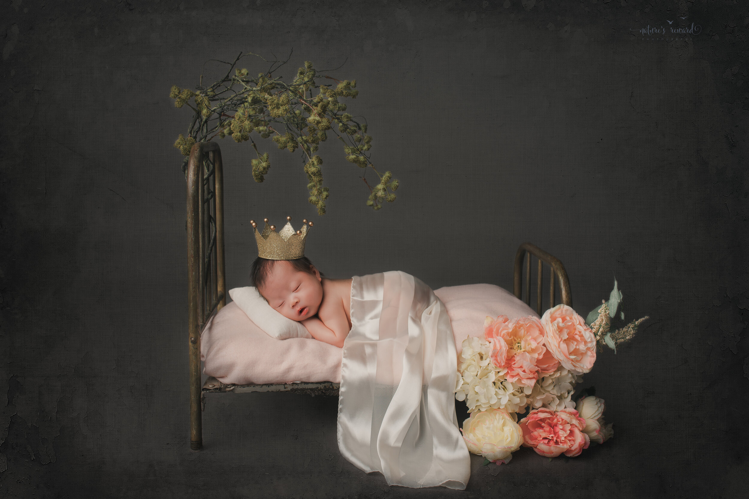 Newborn Baby girl in doll bed in a bum up pose wearing a crown in a studio portrait by nature's Reward Photography