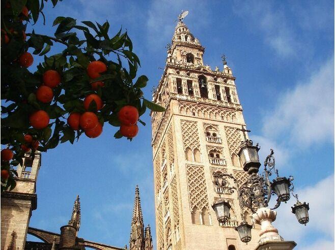 sevilla-oranges.jpg