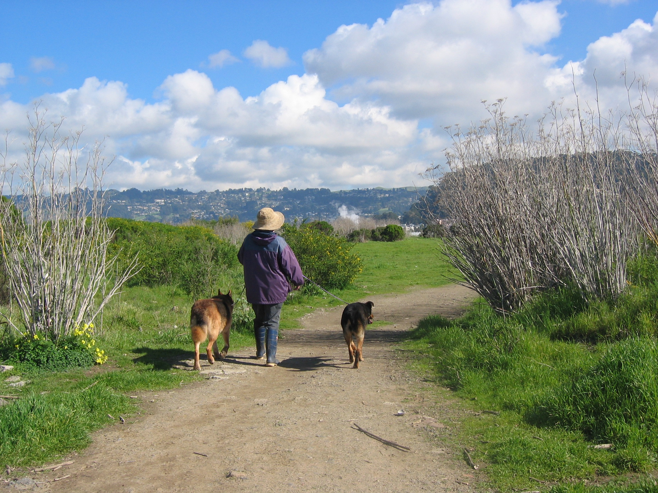 Take a hike - Walking is the most popular activity at the Bulb. The park is open from sunrise to sunset.
