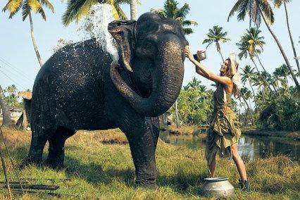 vogue-fashion-editorial-elephant.jpg