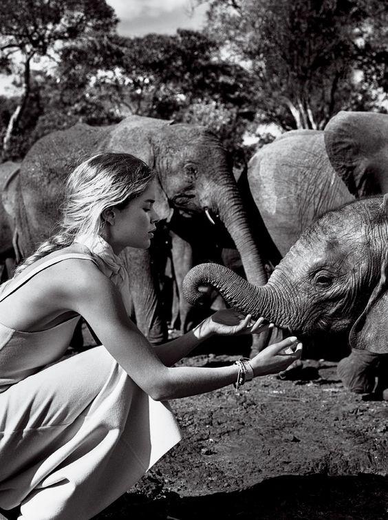 elephant-photography-fashion-black-and-white.jpg