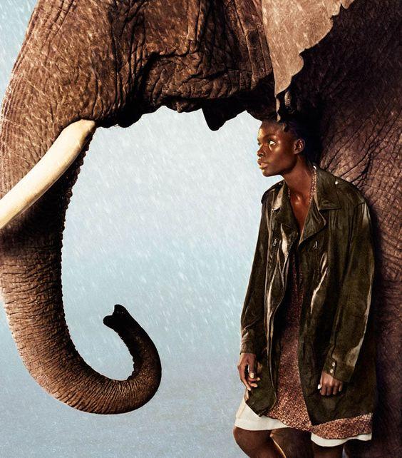 ryan-elephant-fashion-portrait-photography.jpg
