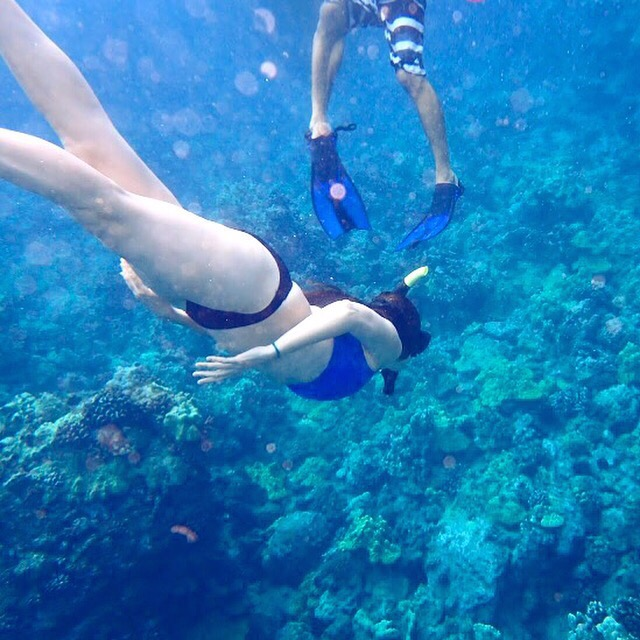 maui hawaii snorkle.jpeg