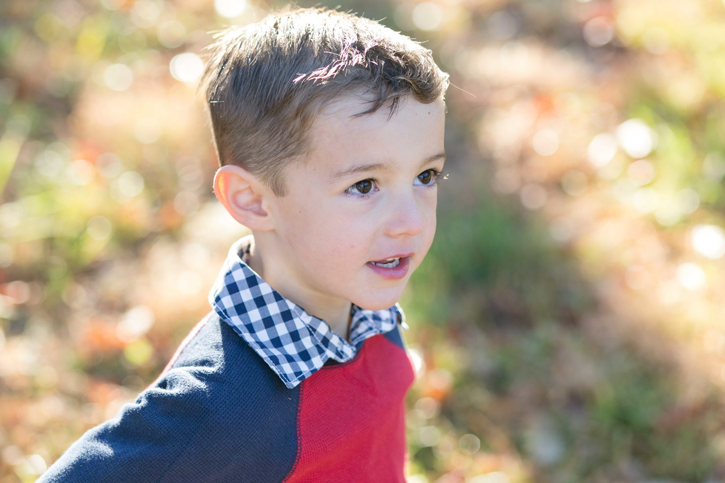 Lewis_Morris_Park_Fall_Family_Photography-3.jpg