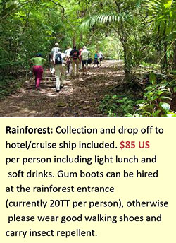 Tobago Rain Forest.png