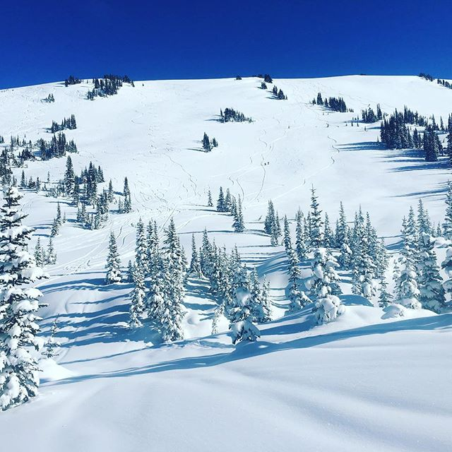 How's your winter been?  Could it have been better spent in Whistler?  @whistlerblackcomb #welivewhistler #powdays #blizzards #bluebird #skiing #snowboarding #seasonaires #liveyourbestlife