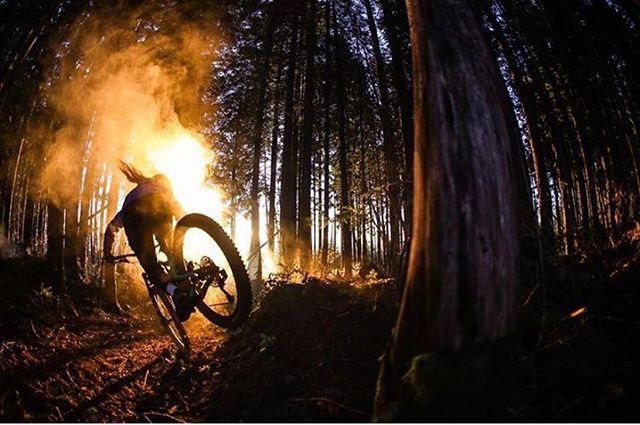 Is your bike ready for Summer.  We still have accommodation in Whistler. 📷: @olliegregoryjones  Rider: @haileyelisee  #mountainbiking #whistler #bikepark #summer #biketrails #accommodation