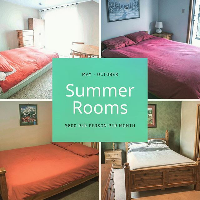 We still have rooms for summer.  Email us: info@rideonwhistler.com  #welivewhistler #mtbiker #mtbiking #mountainlife #accommodation #mountainbiking #whistler #canada #bc #seasonaire #seasonaires