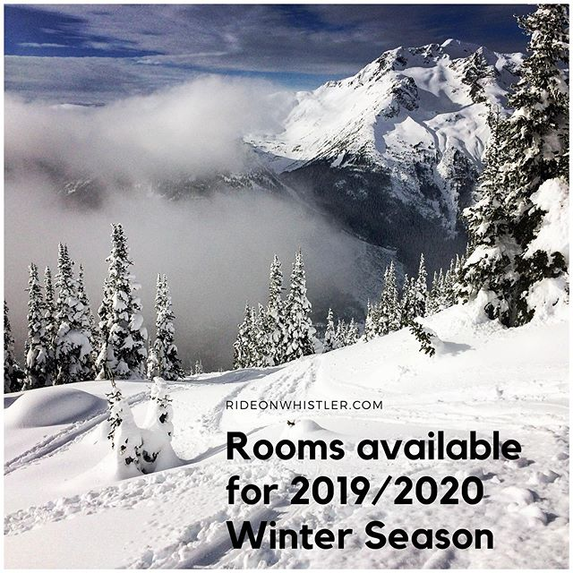 We've had a number of rooms become available for the 2019/2020 coming winter season.  Don't miss the opportunity to secure your housing in one of the tightest housing markets there is.  Contact us now and let's get you booked in!!! #welivewhistler #pow #powseason #skiseason #snowboardseason #shred #apres #whiteout