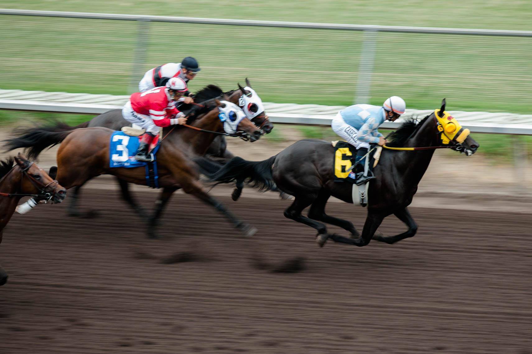 Horse Racing by James Erin de Jauregui